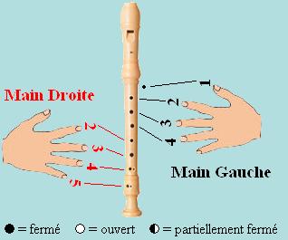 Tablature des flûtes à becs en fa Main