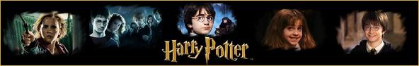 Harry Potter Harry_potter